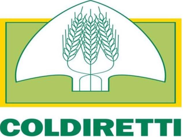 Coldiretti Calabria, logo