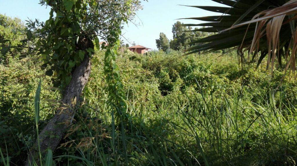 località Marinella - LameziaTermeit