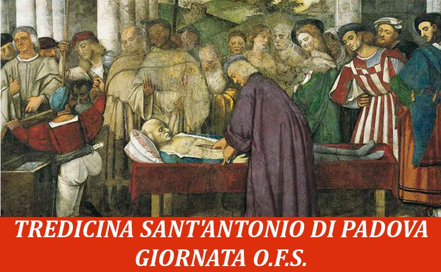 Giornata francescana fraternità OFS, domani a San Marco Argentano ...