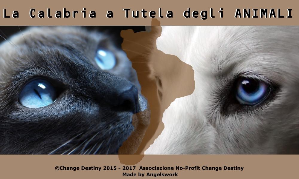 calabria a tutela degli animali-LameziaTermeit