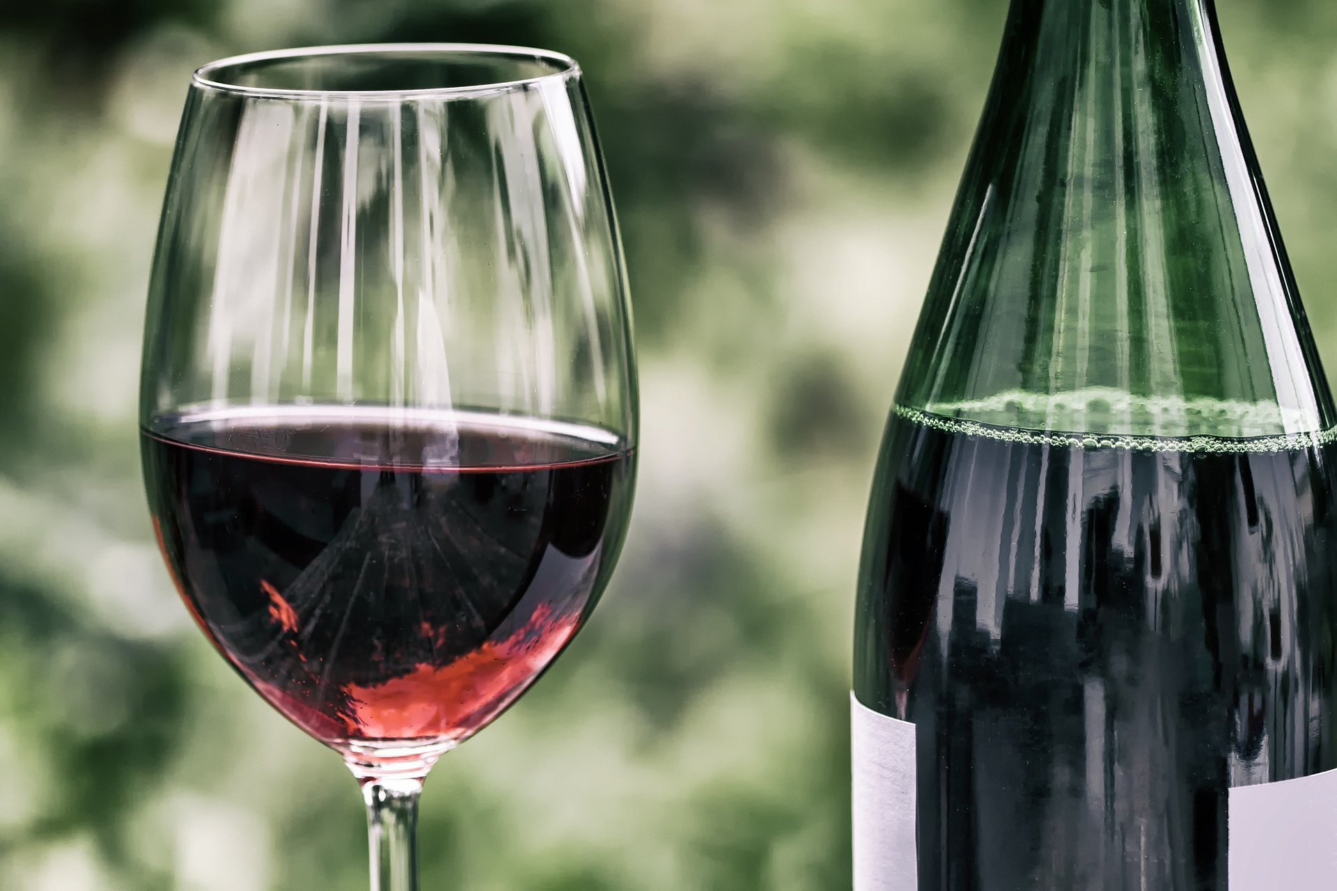Festa del vino 2017 - Lameziatermeit