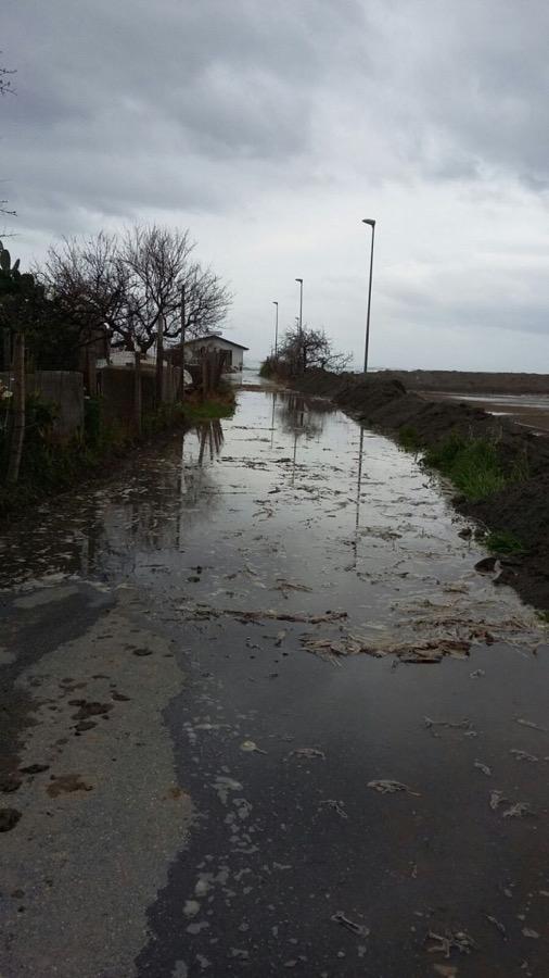 Coldiretti denuncia danni all'agricoltura, campo allagato a Nocera