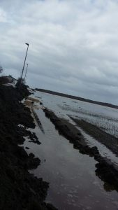Coldiretti denuncia danni all'agricoltura, mareggiate