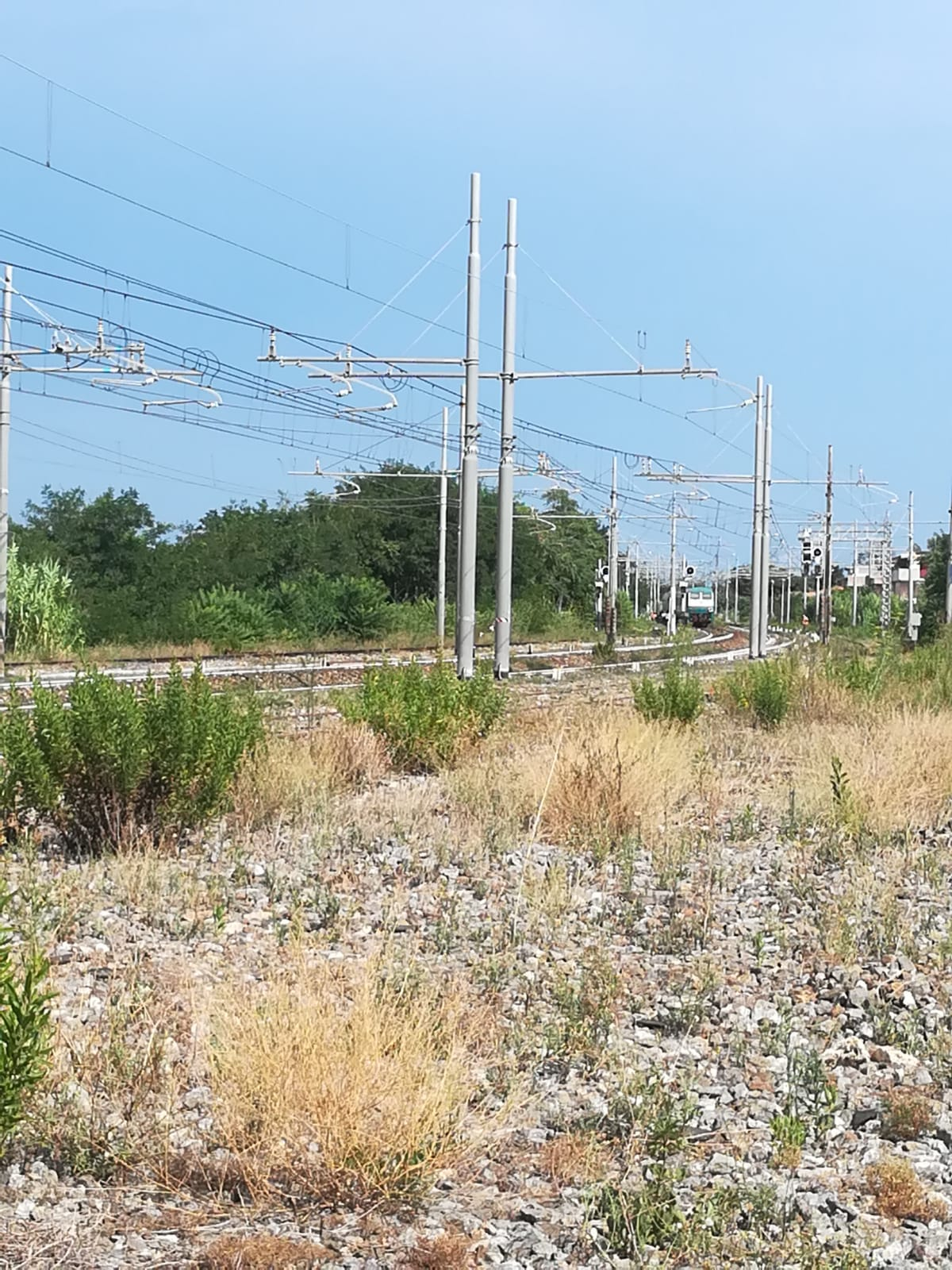 Gizzeria. Tragedia in stazione, uomo suicida travolto dal treno-LameziaTermeit