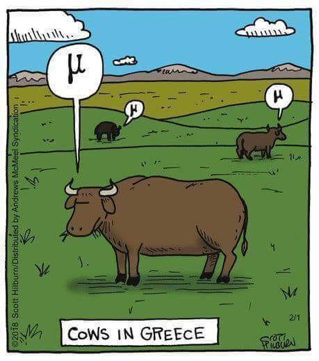 La mucca della Cameo: un bos primigemius!