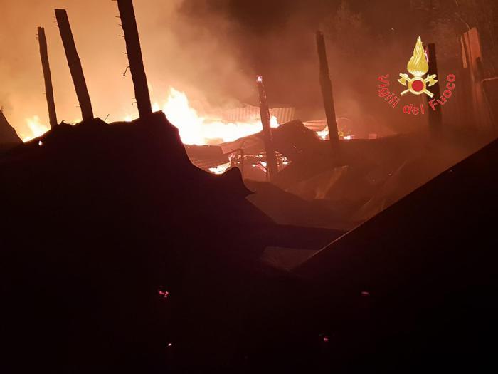 incendio distrugge capannone per animali-LameziaTermeit