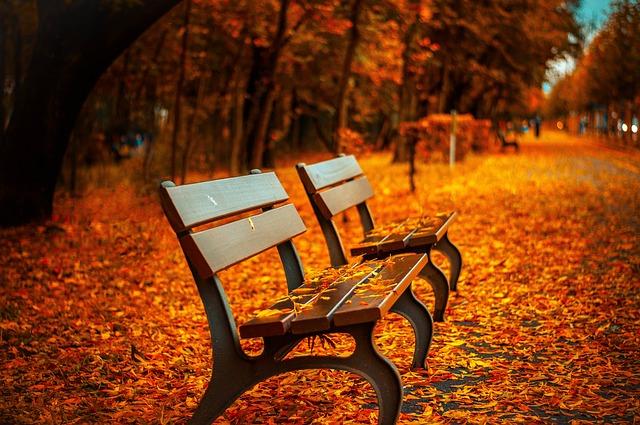 Meteo: è arrivato l'autunno con calo termico-LameziaTermeit