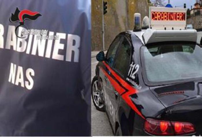 Fabrizia. Sanzioni dei carabinieri per lavoro nero