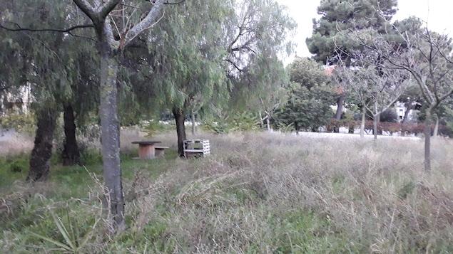 Parco Lorenzo Scarpino