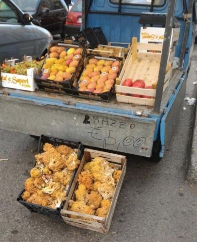 venditore ambulante funghi