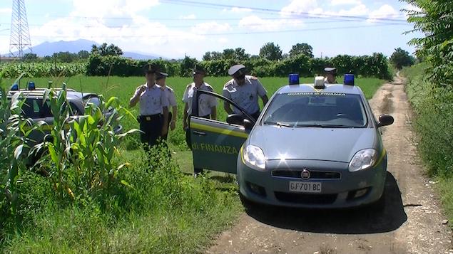 Castrovillari (CS). Falsi braccianti agricoli, denunciate 197 persone