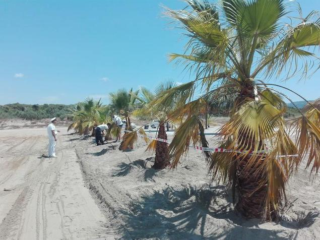 Curinga (CZ). Sequestrata spiaggia per occupazione abusiva