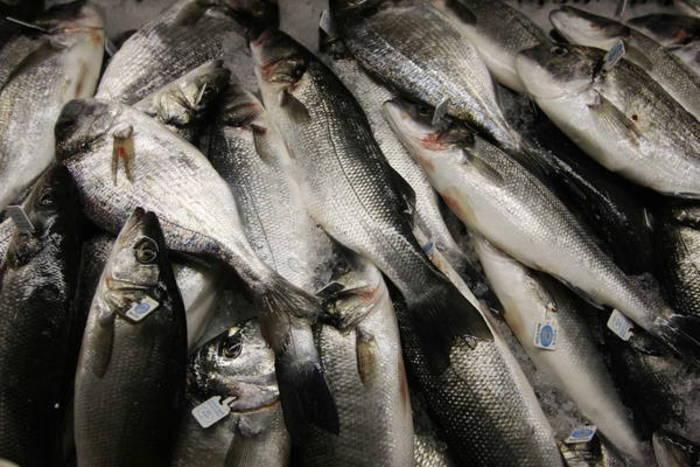 Serra San Bruno (VV). Sequestrati 50 kg pesce non tracciati