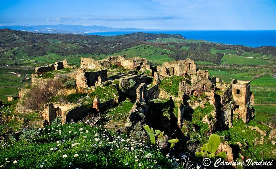 Albero della vita Brancaleone Vetus Calabria