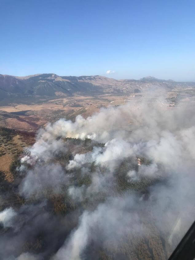 Vasto incendio di bosco tra i comuni di Saracena e San Basile