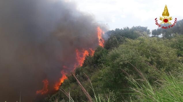 Fossato Serralta (CZ). Divampato grosso incendio in loc. Colle del Vento
