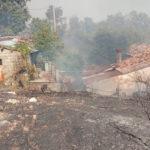 Gimigliano (CZ). Incendio bosco e macchia mediterranea