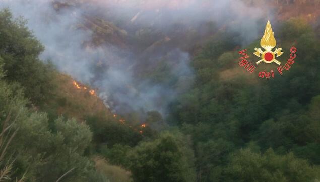 Incendio di macchia mediterranea e bosco a Caminia