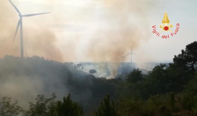 Vasto incendio tra Caraffa e Maida, in fiamme ettari di bosco