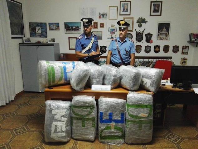 Villapiana (CS). Su furgone con 55 kg marijuana, arrestato