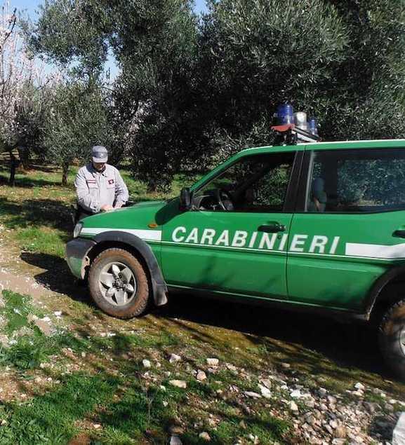 Una pattuglia dei carabinieri Forestale
