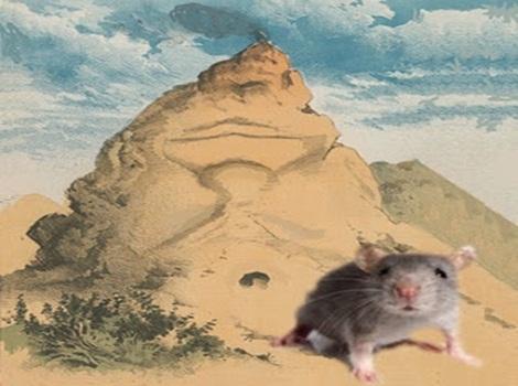 topolino montagna