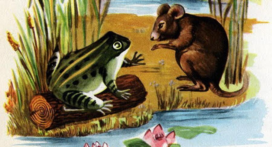 esopo topo e la rana