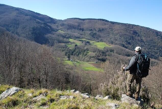 G433. Reventino Mancuso. Alta valle del Torrente Rivale. Foto F. Bevilacqua
