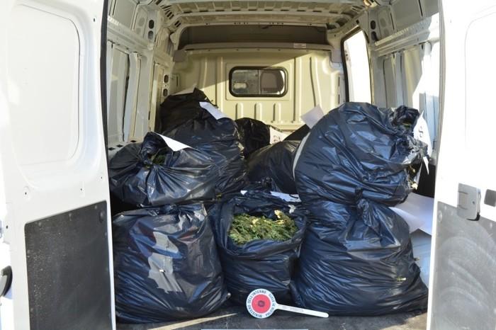 Droga: sequestrati 106 kg di marijuana, quattro arresti