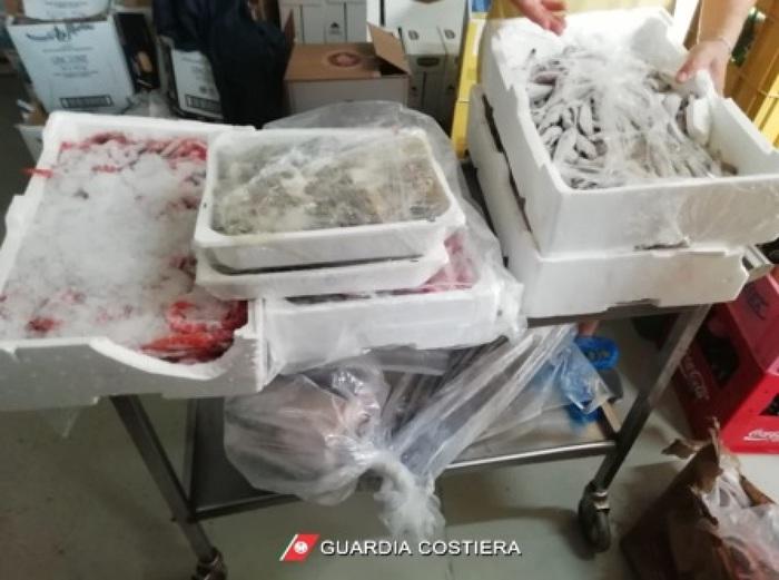 Sequestrati 900 chili di prodotto ittico in un lido