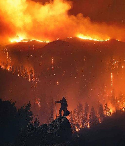 Che tutti sappiano che sta bruciando il parco nazionale dell'Aspromonte