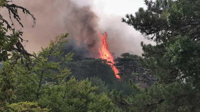 Incendi: santuario Aspromonte quasi isolato, fedeli costretti a tornare indietro
