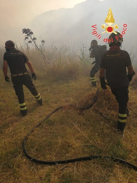 Incendi: nella sola giornata di ieri oltre 170 interventi dei vigili del fuoco