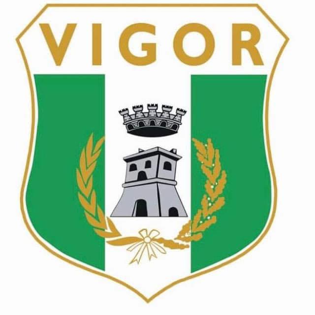 vigor 1919