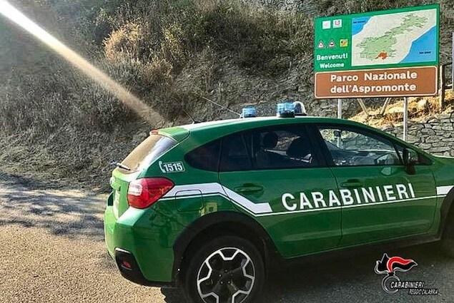 carabinieri forestali reggio calabria